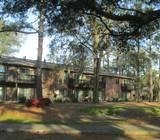 Image of Mossy Oaks